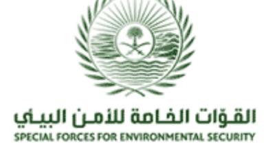 Photo of إعلان نتائج القبول المبدئي للوظائف العسكرية للقوات الخاصة للأمن البيئي