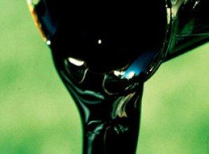 heavy oil