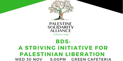 BDS: A Striving Initiative for Palestinian Liberation