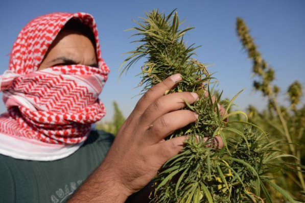 Will Lebanon Legalize Cannabis?