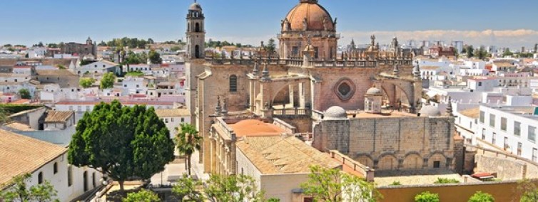 Days of Wine and Horses in Jerez De La Frontera