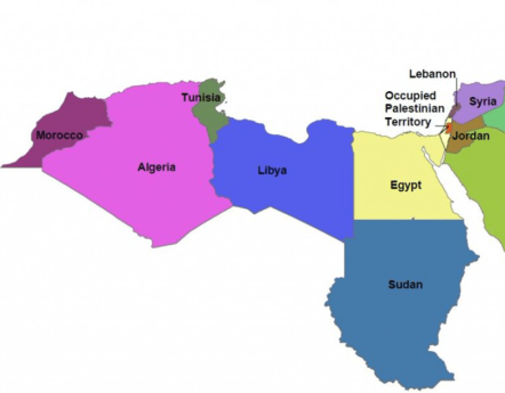 Similarities & Differences between the Levant and North African Regions