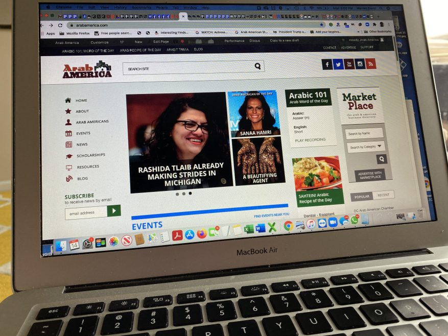 Arab America Ranks in the Top 100,000 of 400 Million Active Websites in the World