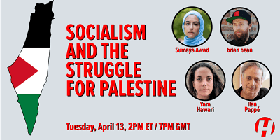 Socialism and the Struggle for Palestine