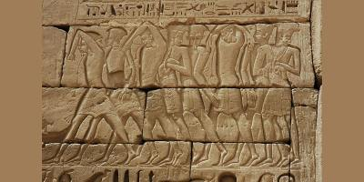 Egypt & Late Bronze Age Collapse