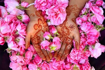 8 Amazing National Flowers of the Arab World