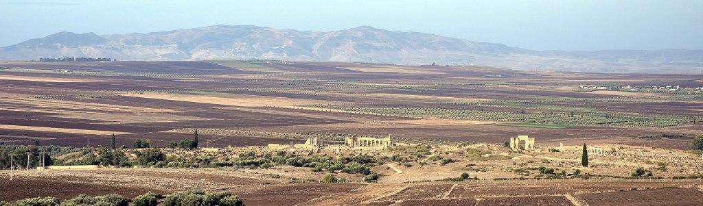 A History of Volubilis: The Roman-era Ruins in Morocco