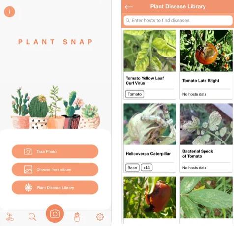 تطبيق PlantDetect للتعرف على النباتات