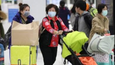 Photo of تسجيل أول إصابة بفيروس كورونا في الإمارات