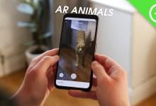 Photo of تعرف على طريقة إظهار حيوانات ثلاثية الابعاد جوجل 3d الجديدة  في كاميرا هاتفك