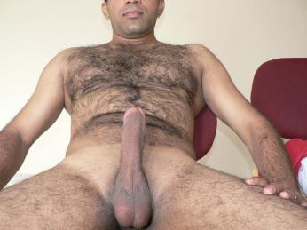 arabes poilus et bears 10