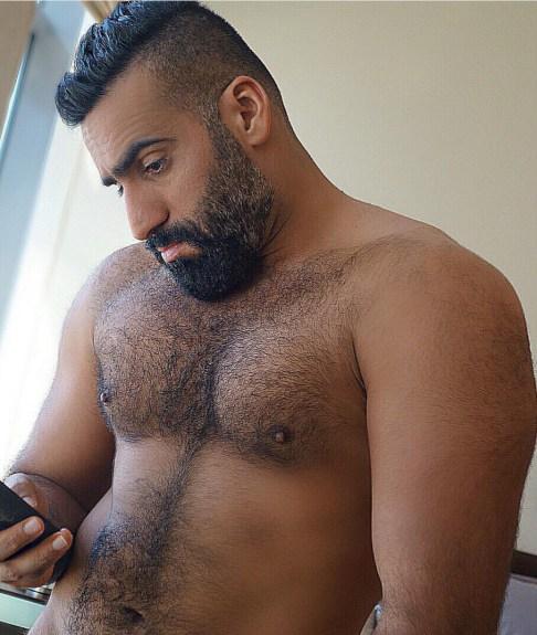 arabes poilus et bears 43