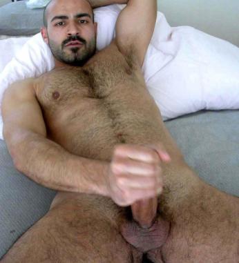 arabes poilus et bears 9