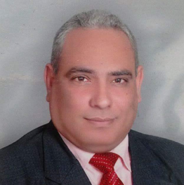 الدبلوماسية المصرية -احمد عواد