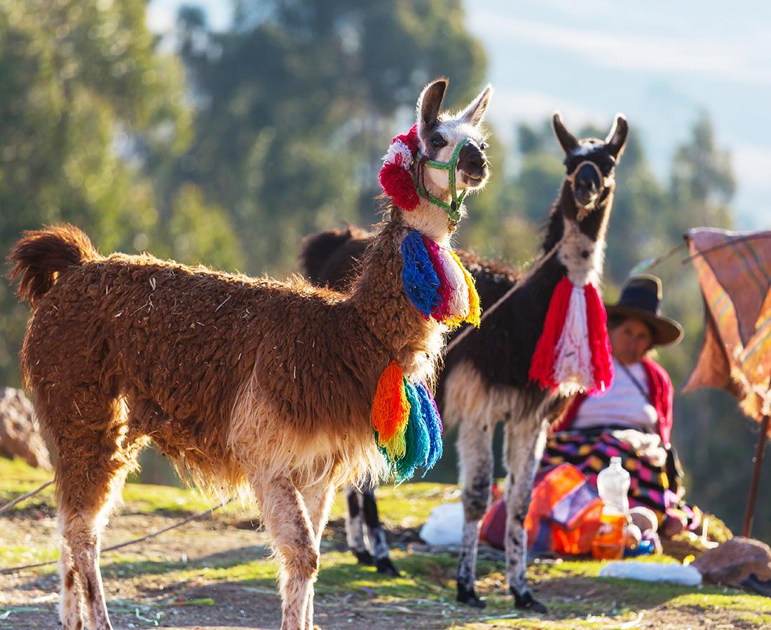 Cultuur Peru