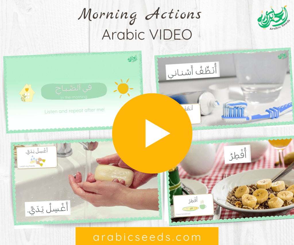 Arabic video morning actions routine - Arabic Seeds