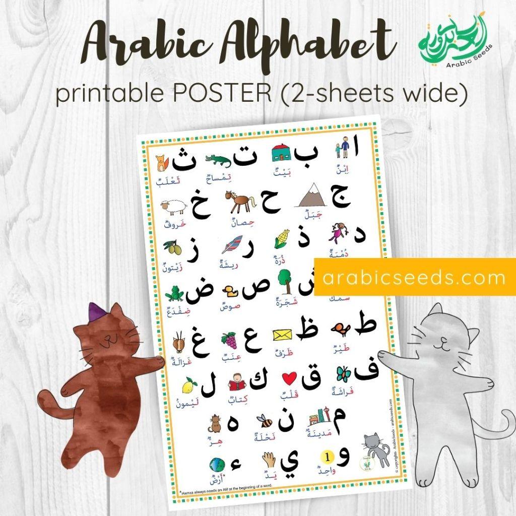 Arabic Alphabet POSTER printable - Arabic Seeds