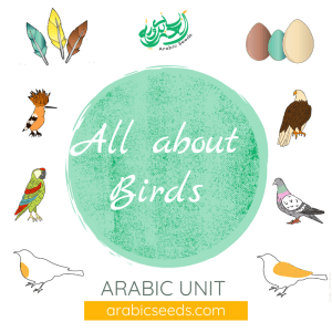 Arabic birds unit theme - printables, videos, audios, games - Arabic Seeds resources for kids