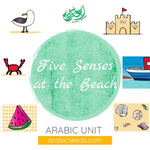Arabic five senses beach summer unit theme - printables, videos, audios, games - Arabic Seeds resources for kids