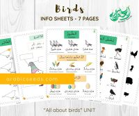 Birds theme info sheets Arabic worksheets printable by Arabic Seeds