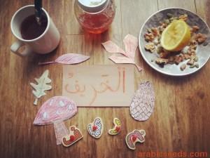 Fall Season flatlay - photo by Arabic Seeds
