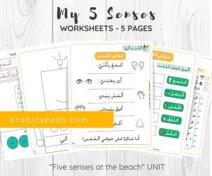 My five senses Arabic worksheets printable by Arabic Seeds