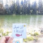 Arabic Park speaking cards