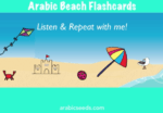 Videos: Beach flashcards & sentences