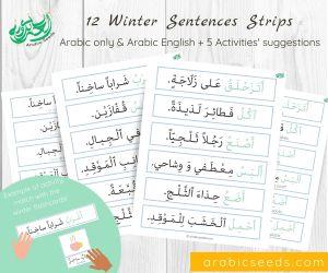 Arabic Winter sentences strips printable - Arabic Seeds themed units