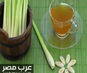 شاي عشب الليمون فوائدة الصحية للجسم ويحسن اعراض كتيرة تظهر علي جسم الانسان