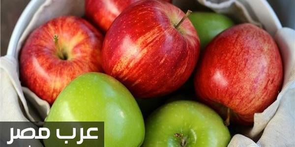 فوائد تناول التفاح علي الريق لصحة الجسم المفيدة أهمها إطالة العمر