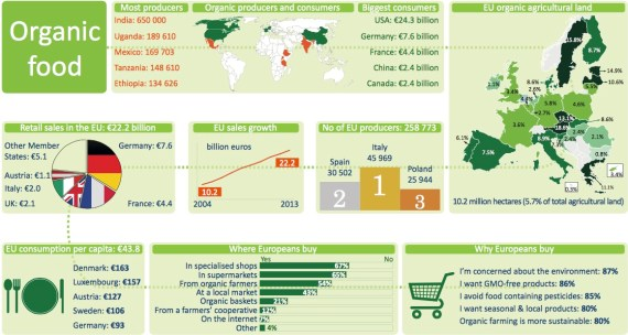 Consumption Organic Food Malaysia Numbers