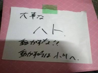 NHK アイアングランマ2撮影