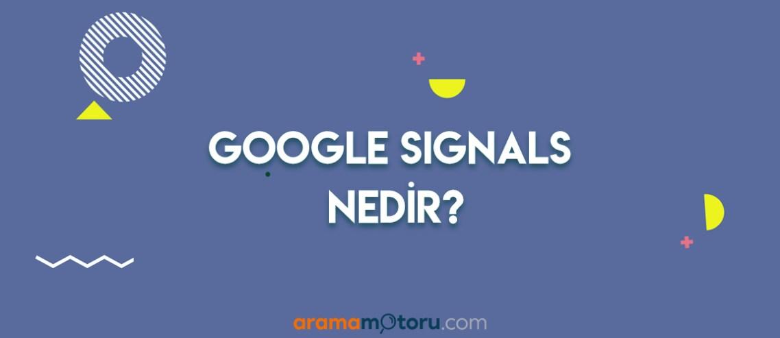 Google Signals Nedir