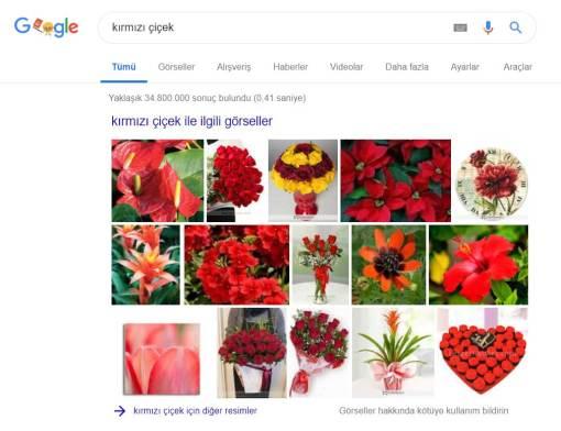 Google Kırmızı Çiçek Araması