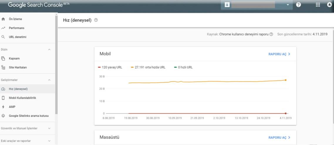 Google Search Console Sayfa Hızı Raporu