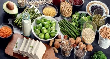 Meatless' Meat: Opportunities for Plant-based Protein Ingredients | Aranca