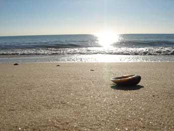 a orillas del mar me senté y lloré