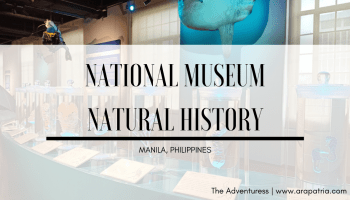 "ALT=""national museum natural history manila"""