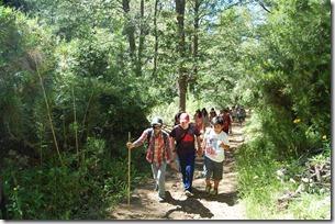 Visita y explora Malalcahuello 7