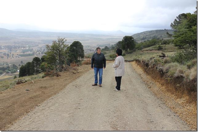 Camino indigena Icalma-2
