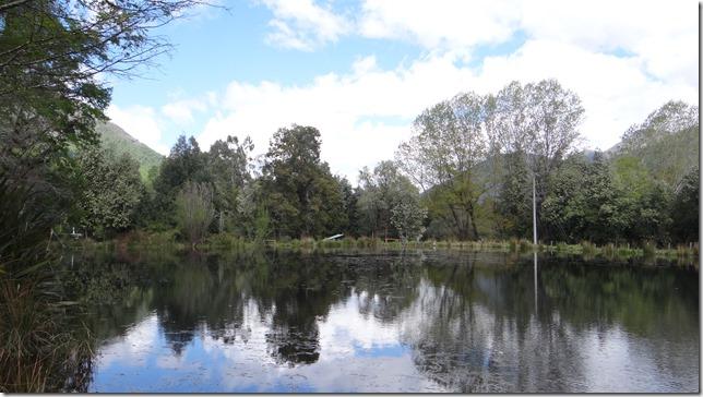 Reserva Malleco
