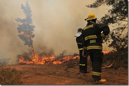 Incendio Forestal Lago Peñuela en Valparaiso