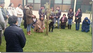 curso mapuche lautaro_1