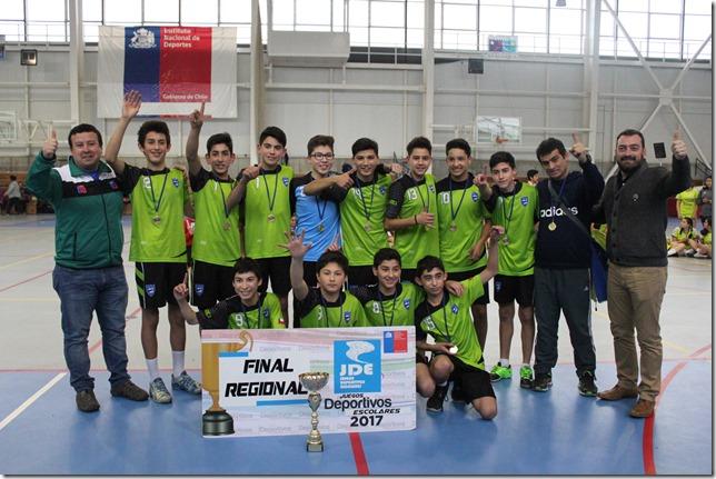 Colegio ALberto Hurtado de Villarrica Campeones Varones sub 14 balonmano