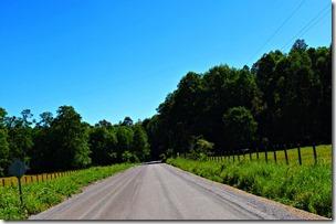 Conservacion Camino Caburbua Huepil (3)
