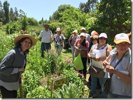 FOTO emprendimiento agroecológico 2