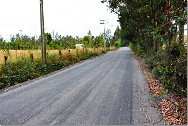 Camino Coyahue Metrenco en la comuna de Padre Las Casas (8)
