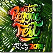 Flyer Natural Reggae Fest