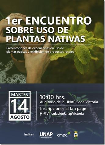 afiche yerbas nativas 31.07